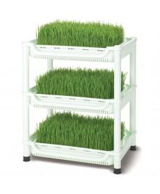 Germoir Sproutman pour herbe de blé