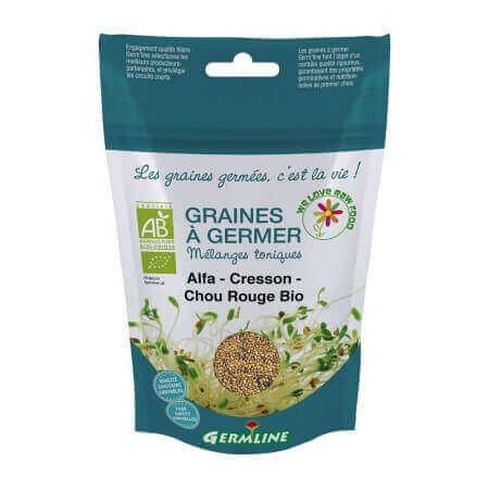 Graines à germer Alfalfa - Cresson - Chou Rouge