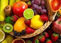 Déshydrateur Sedona fruit legume