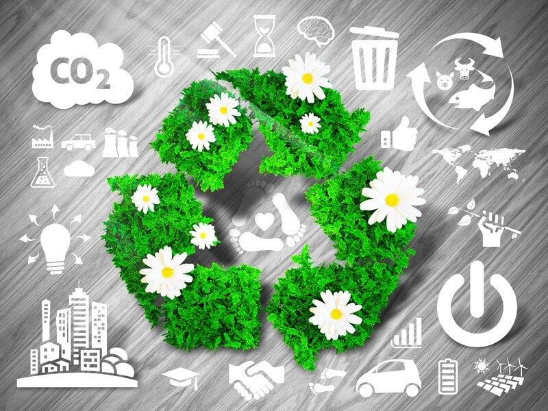 5 astuces pour réduire votre empreinte carbone