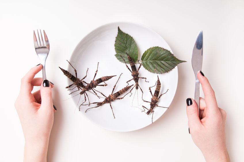 Nourriture du futur : que mangerons-nous dans trente ans?