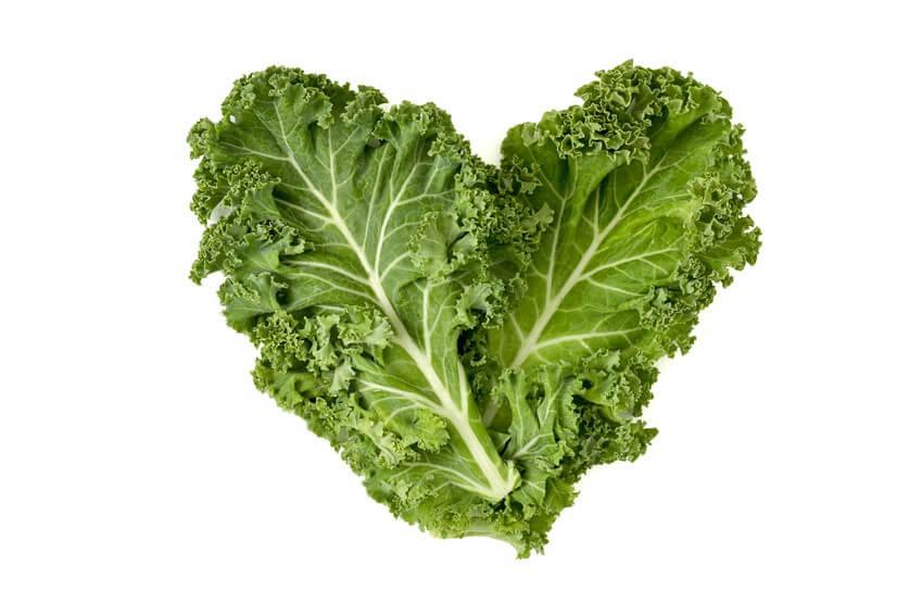 Exploitez les bienfaits du chou kale, ce superaliment