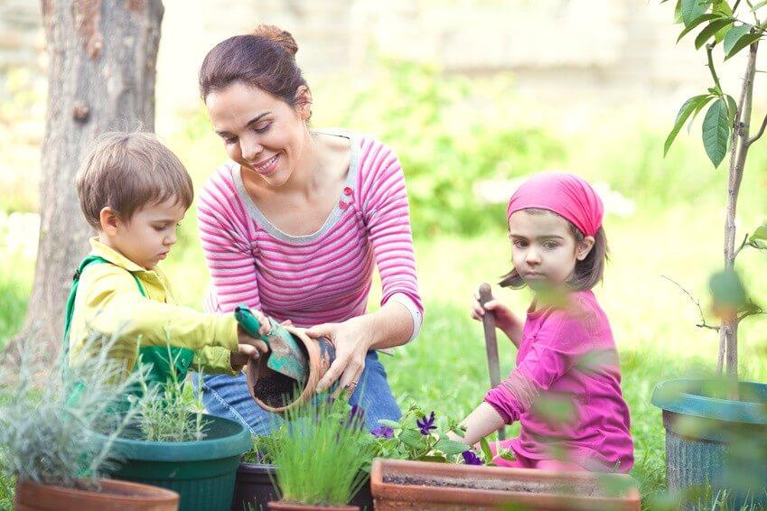 Comment participer à un jardin partagé : tout savoir